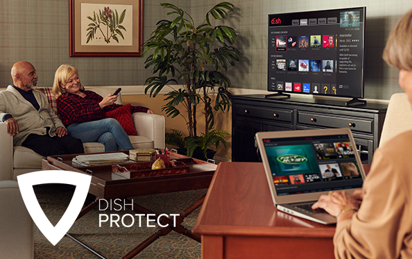 Get DISH Protect from Ledbetter Electronics in Maryville, Tennessee